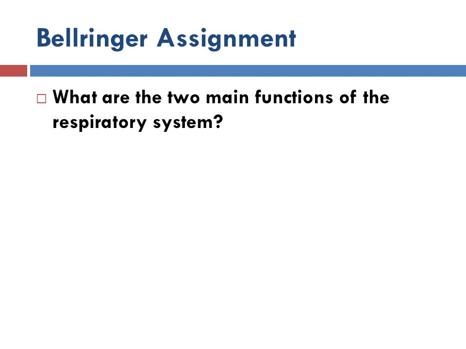 Bellringer Assignment