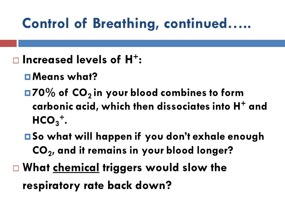 Control of Breathing, continued…..