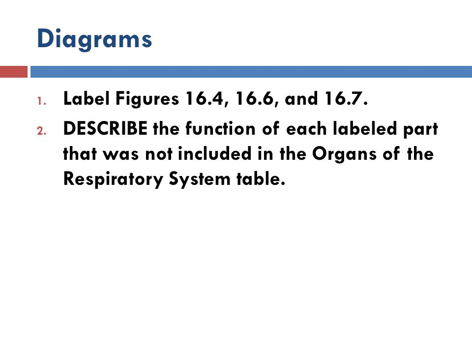 Diagrams Label Figures 16.4, 16.6, and 16.7.
