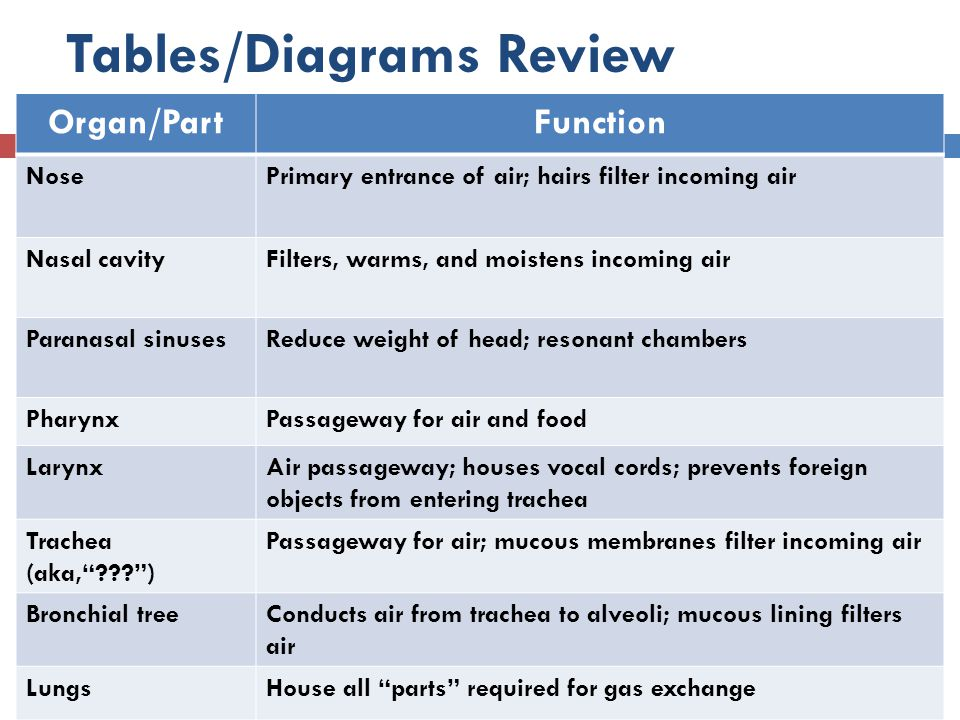 Tables/Diagrams Review
