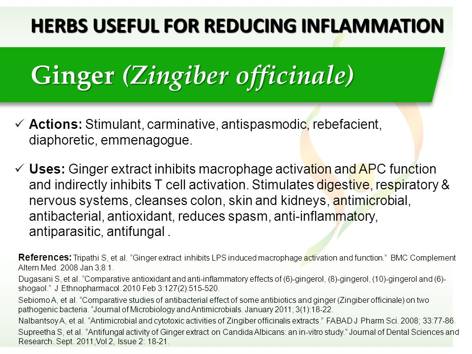 HERBS USEFUL FOR REDUCING INFLAMMATION