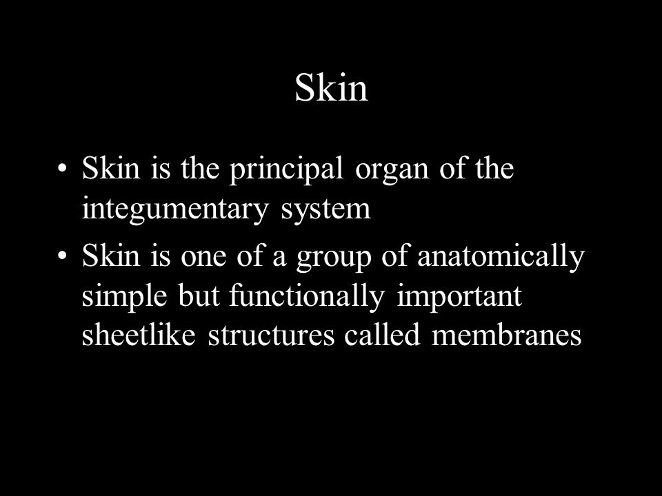 Skin Skin is the principal organ of the integumentary system