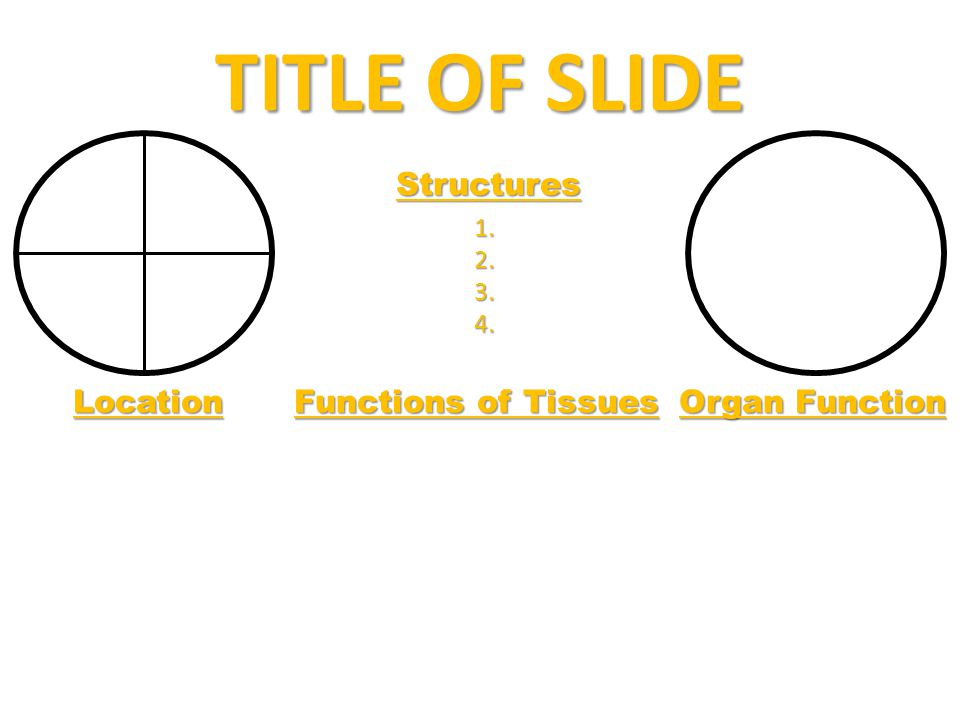TITLE OF SLIDE Structures Location Functions of Tissues Organ Function