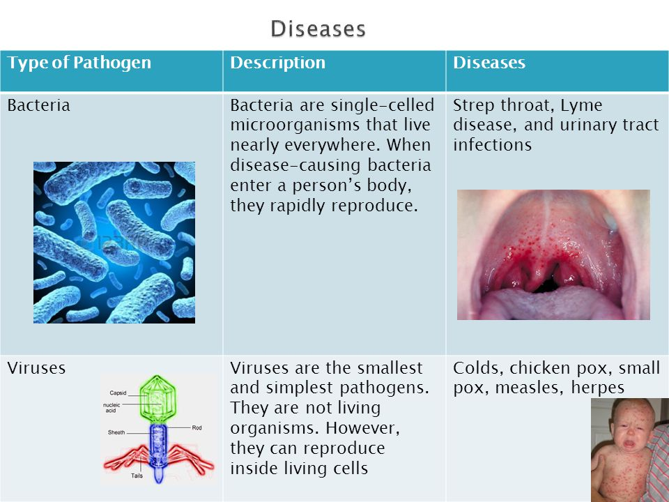 Diseases Type of Pathogen Description Diseases Bacteria