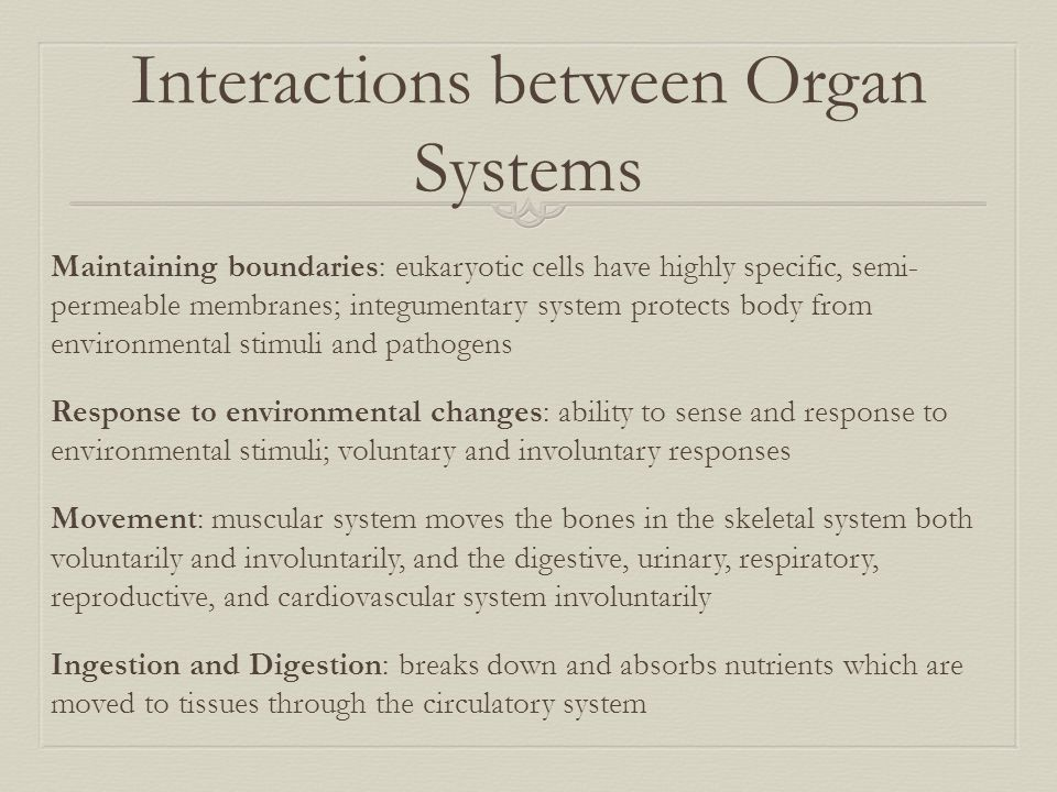 Interactions between Organ Systems
