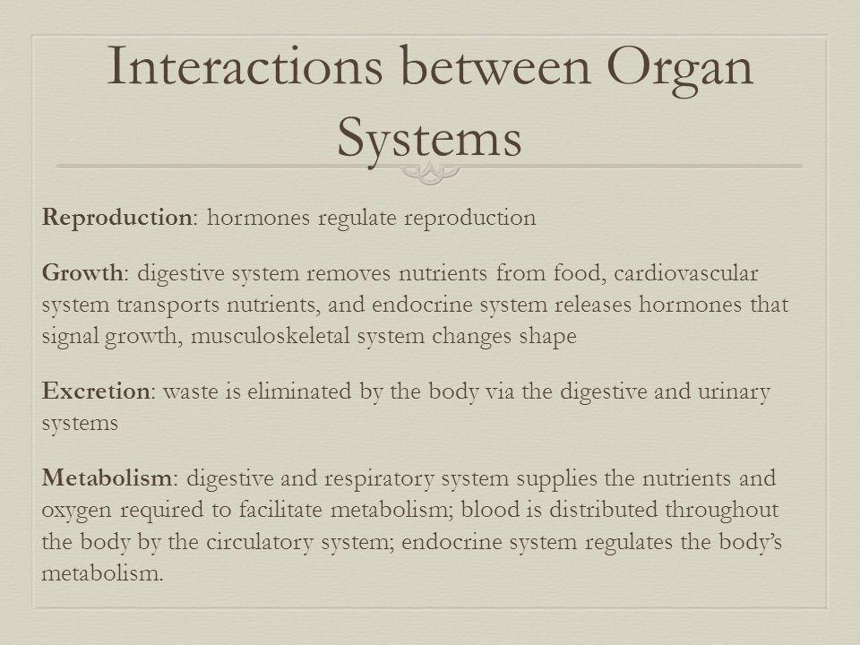 Interactions between Organ Systems