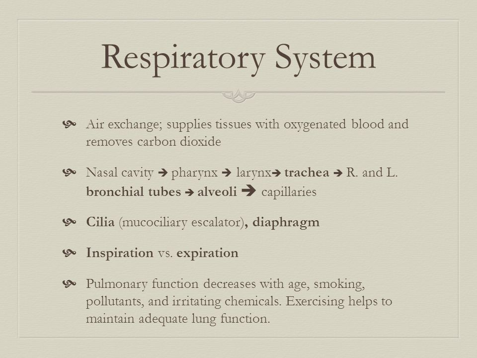 Respiratory System Air exchange; supplies tissues with oxygenated blood and removes carbon dioxide.