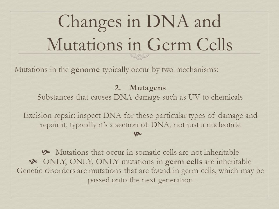 Changes in DNA and Mutations in Germ Cells