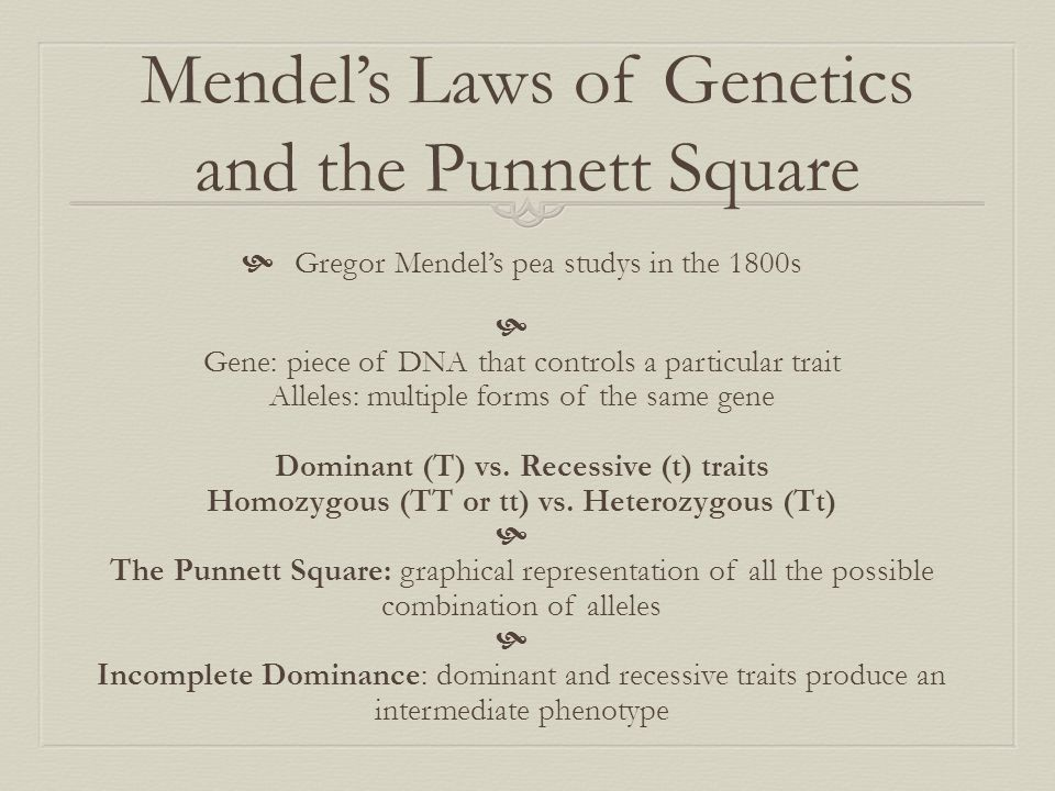 Mendel's Laws of Genetics and the Punnett Square