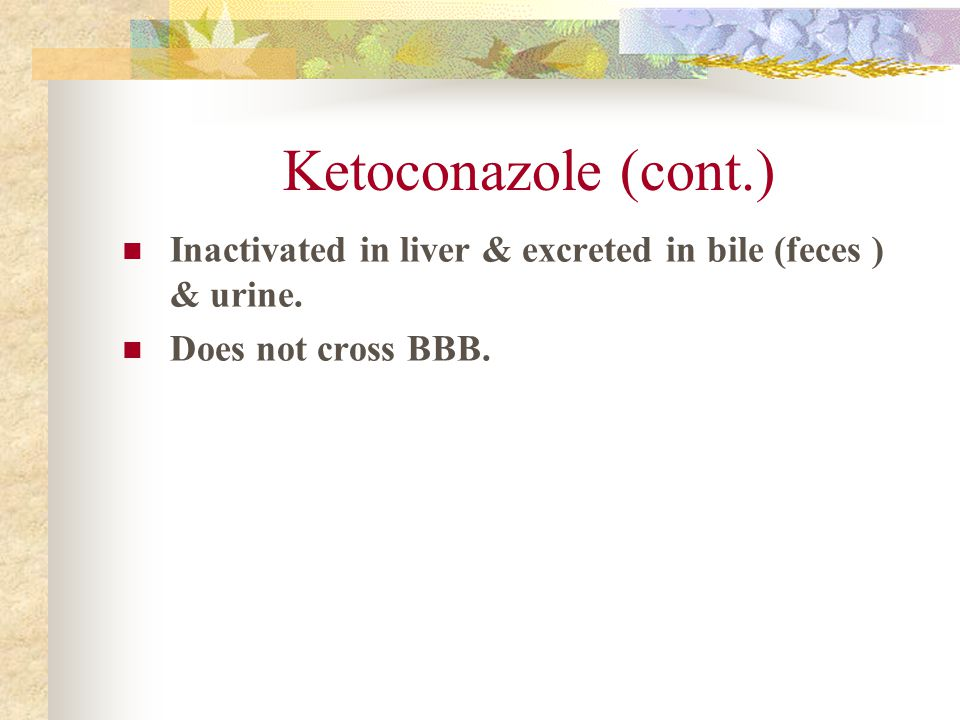 Ketoconazole (cont.) Inactivated in liver & excreted in bile (feces ) & urine. Does not cross BBB.