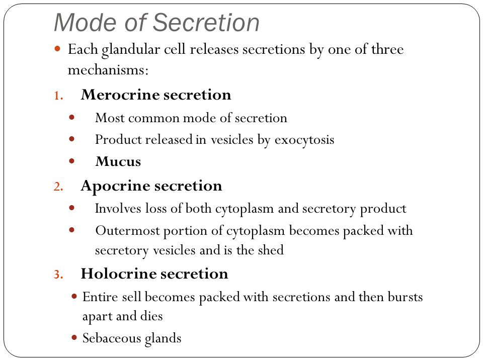 Mode of Secretion Each glandular cell releases secretions by one of three mechanisms: Merocrine secretion.