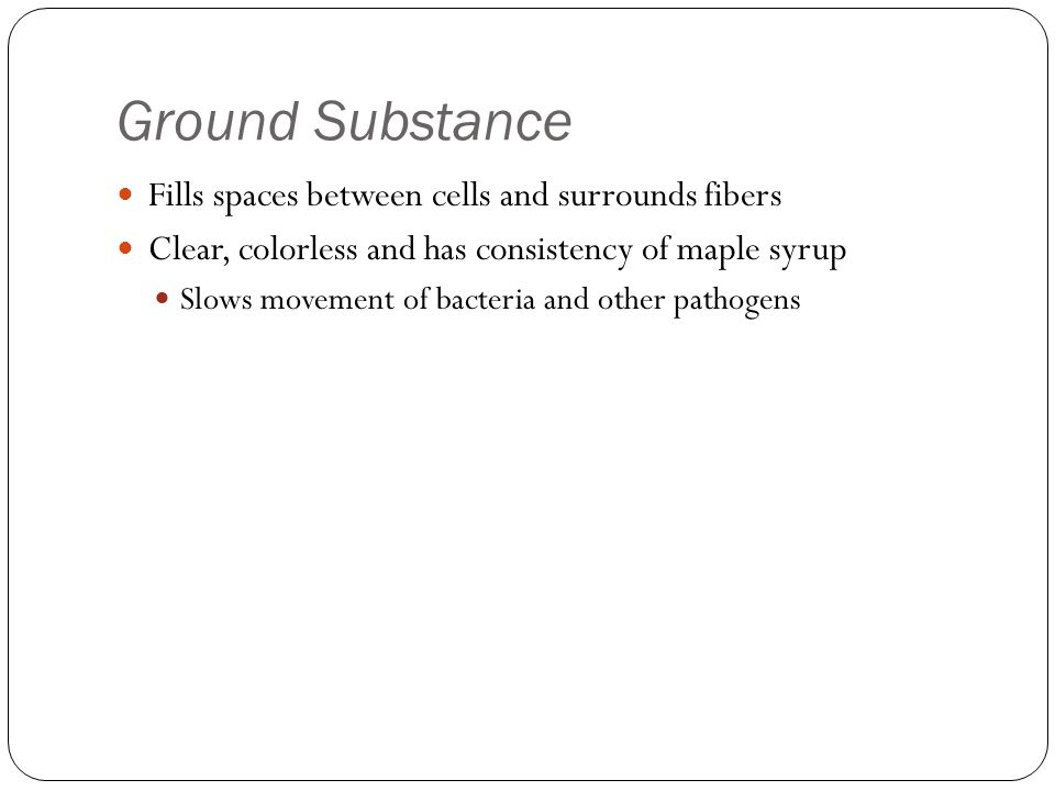 Ground Substance Fills spaces between cells and surrounds fibers