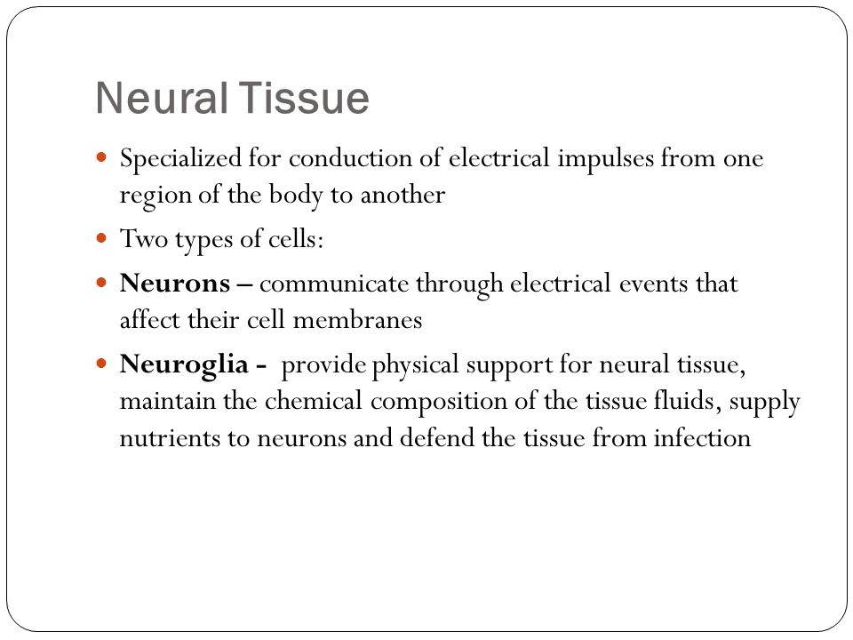 Neural Tissue Specialized for conduction of electrical impulses from one region of the body to another.