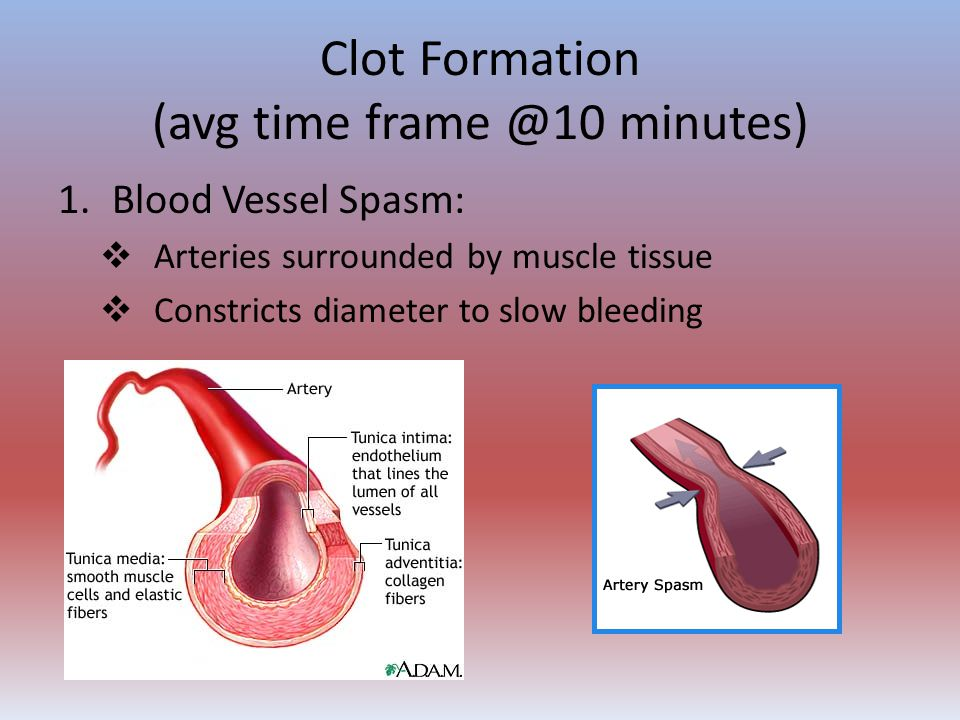 Clot Formation (avg time frame @10 minutes)