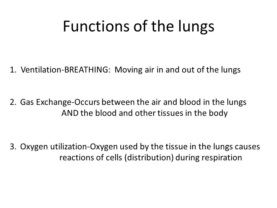 Functions of the lungs 1. Ventilation-BREATHING: Moving air in and out of the lungs. Gas Exchange-Occurs between the air and blood in the lungs.