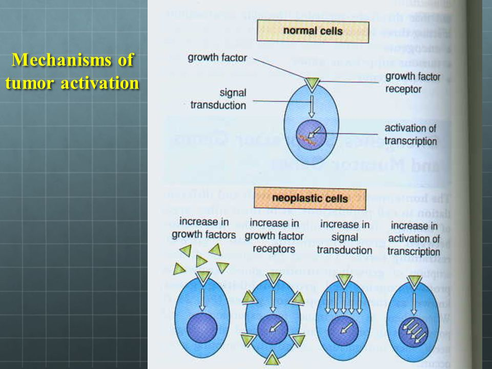 Mechanisms of tumor activation