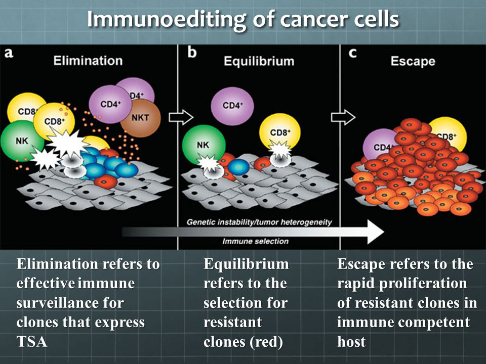 Immunoediting of cancer cells