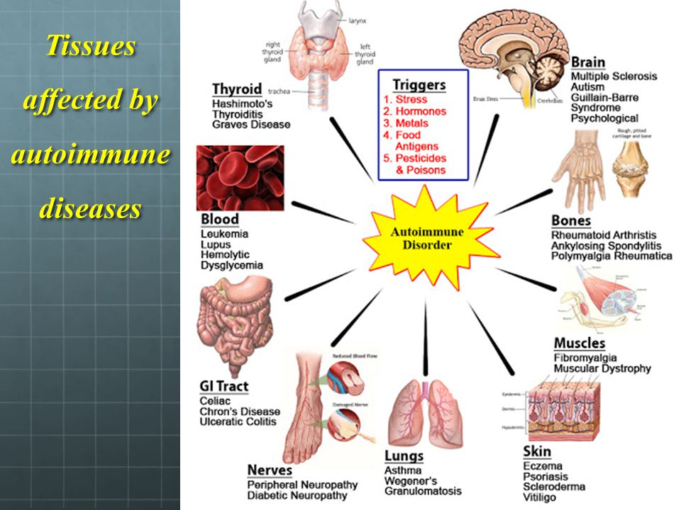 Tissues affected by autoimmune diseases
