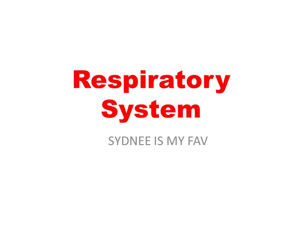 Respiratory System SYDNEE IS MY FAV