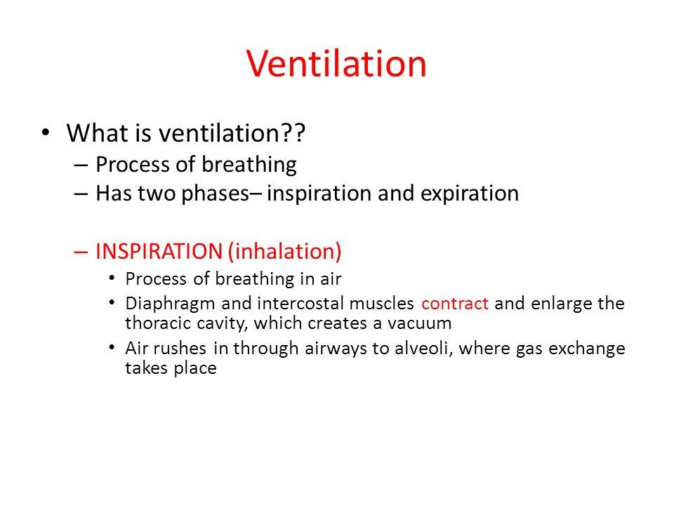 Ventilation What is ventilation Process of breathing