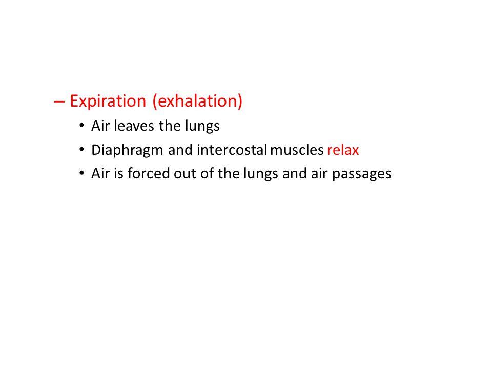 Expiration (exhalation)