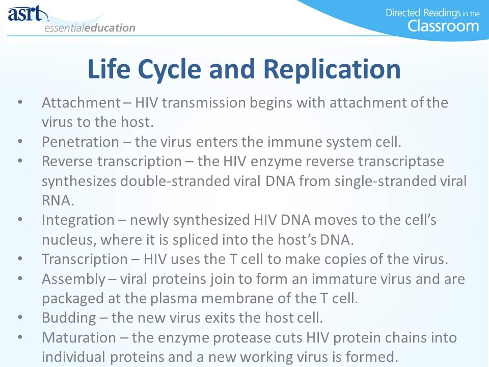 Life Cycle and Replication