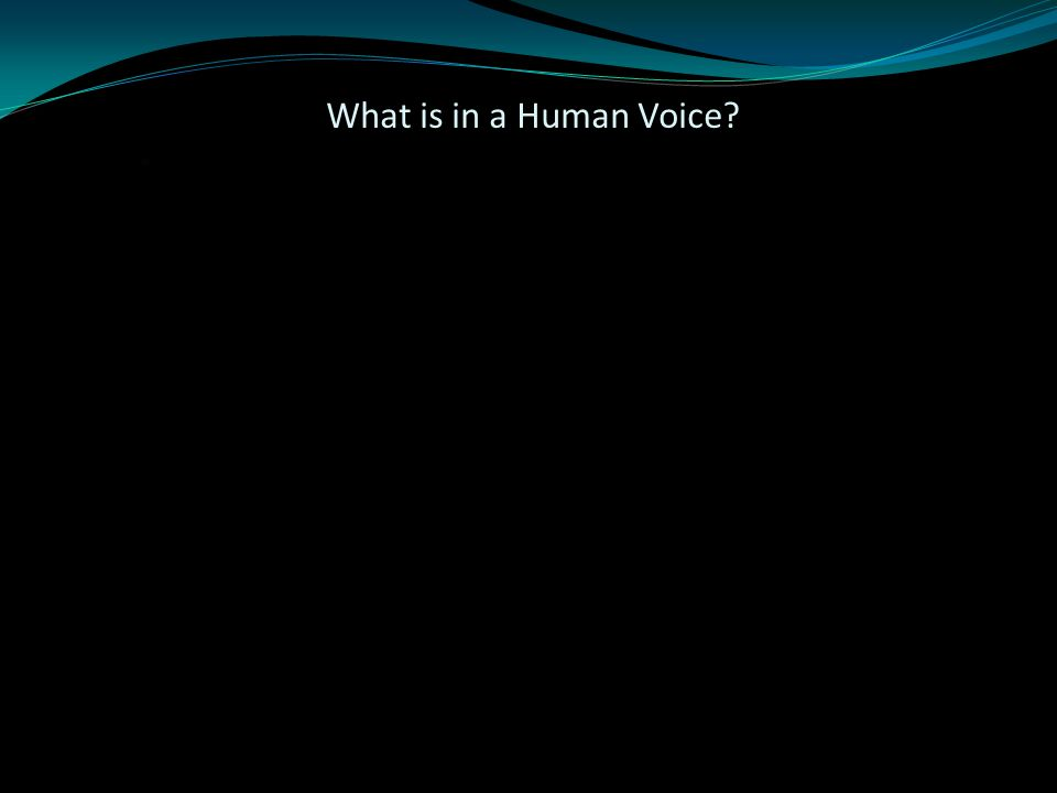 What is in a Human Voice