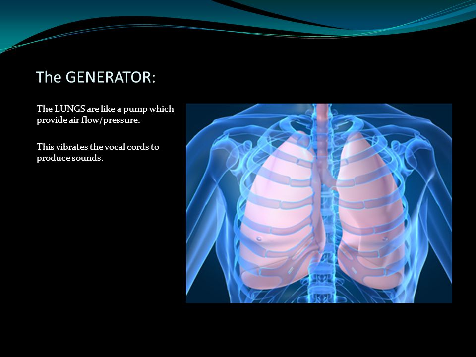 The GENERATOR: The LUNGS are like a pump which provide air flow/pressure.