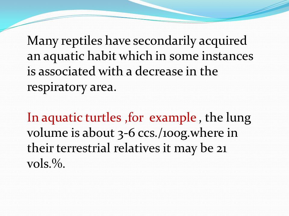 Many reptiles have secondarily acquired an aquatic habit which in some instances is associated with a decrease in the respiratory area.