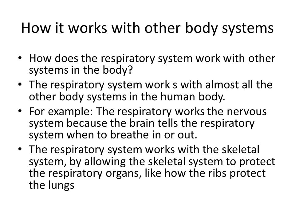 How it works with other body systems