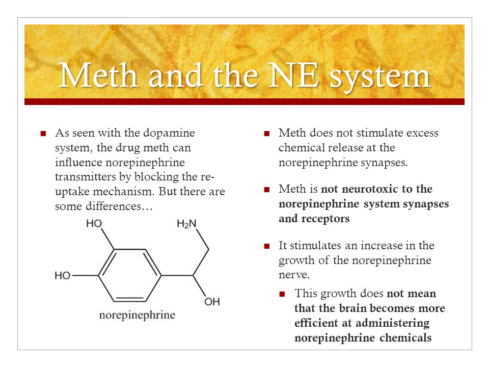 Meth and the NE system