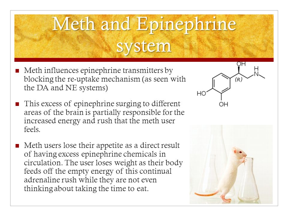 Meth and Epinephrine system