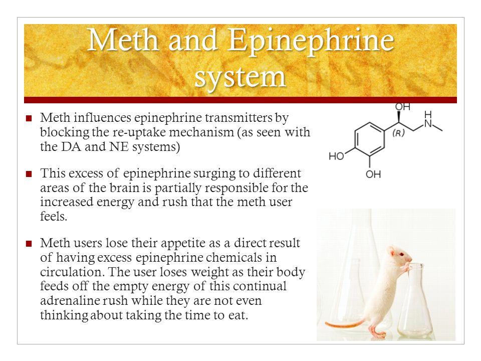 Meth and Epinephrine system