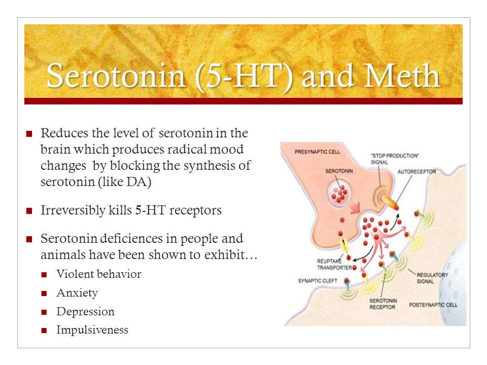 Serotonin (5-HT) and Meth