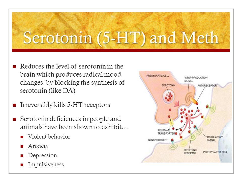 Serotonin (5-HT) and Meth