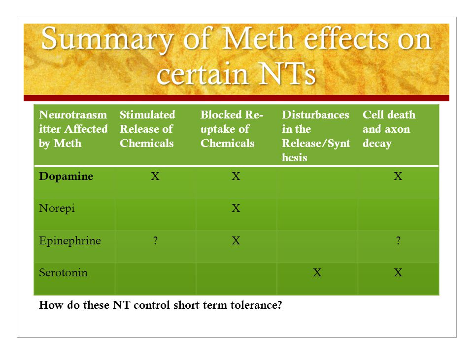 Summary of Meth effects on certain NTs