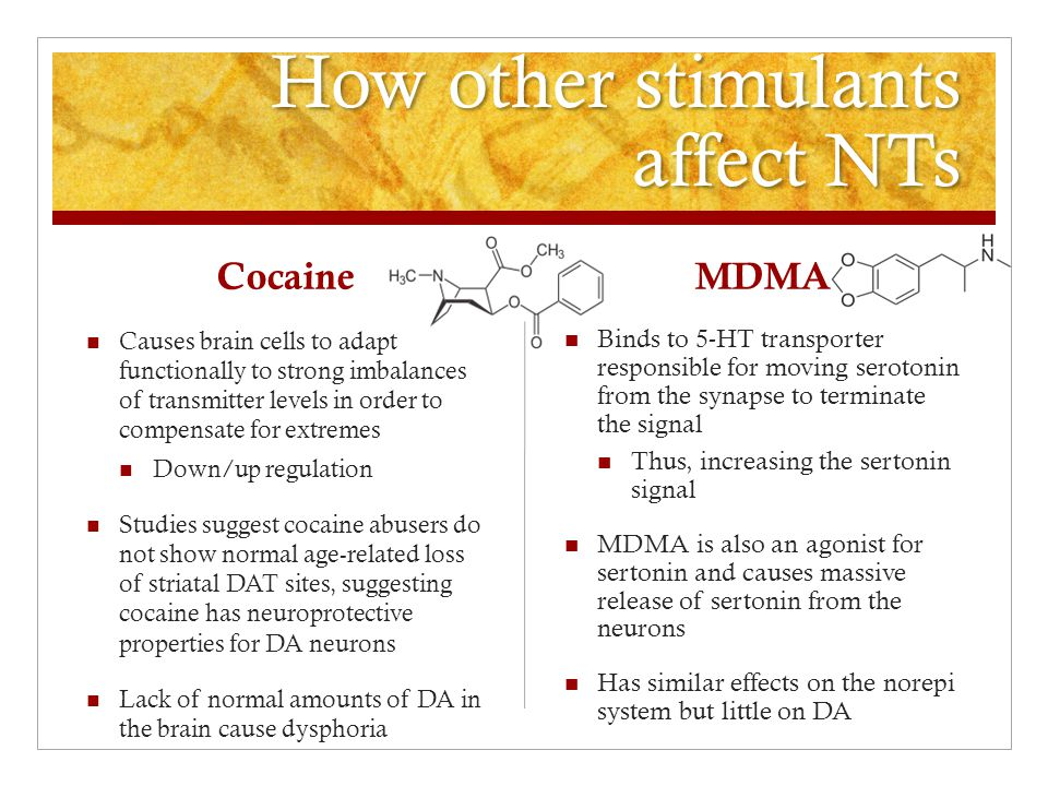 How other stimulants affect NTs