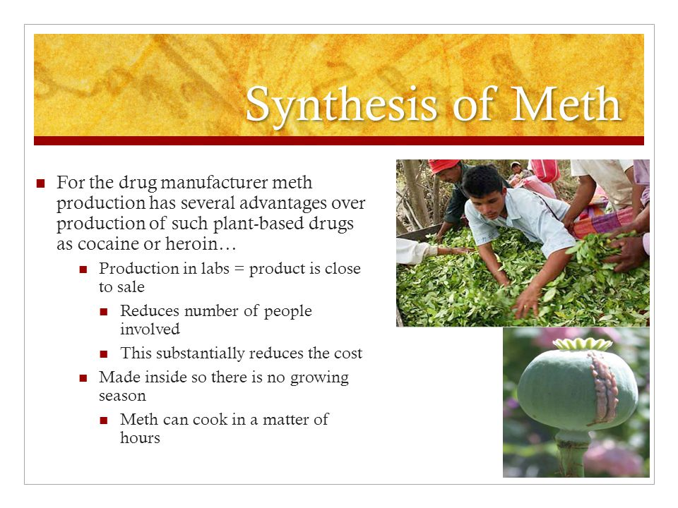 Synthesis of Meth For the drug manufacturer meth production has several advantages over production of such plant-based drugs as cocaine or heroin…