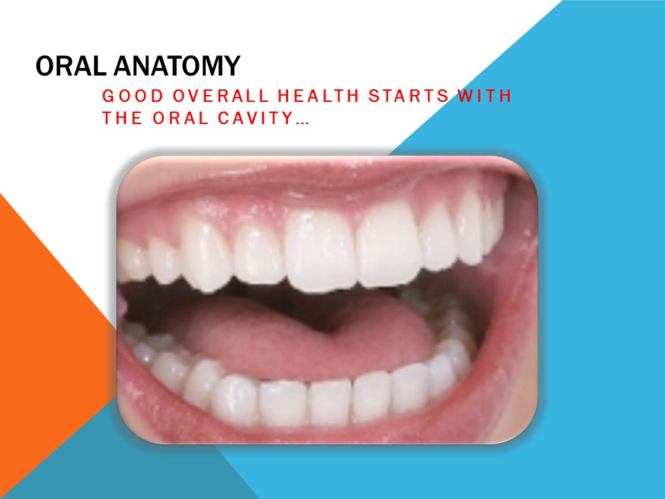 Good overall health starts with the oral cavity…