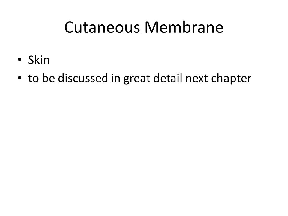 Cutaneous Membrane Skin to be discussed in great detail next chapter