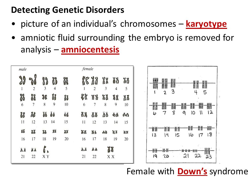 Detecting Genetic Disorders