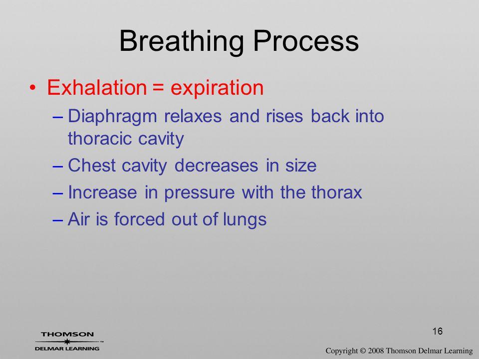 Breathing Process Exhalation = expiration