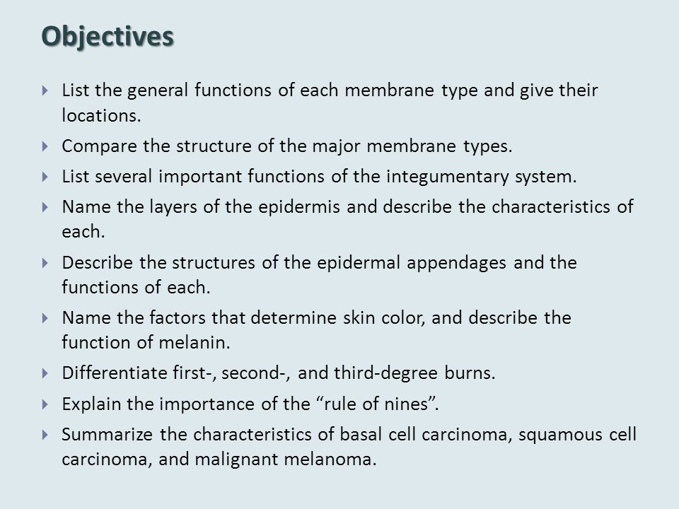 Objectives List the general functions of each membrane type and give their locations. Compare the structure of the major membrane types.
