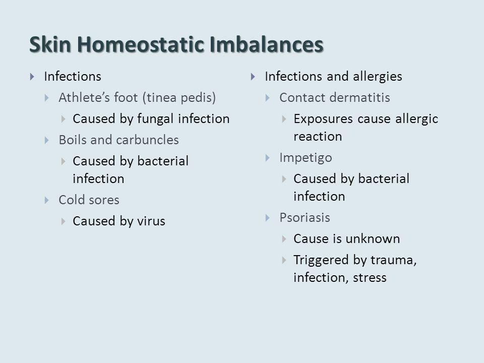 Skin Homeostatic Imbalances