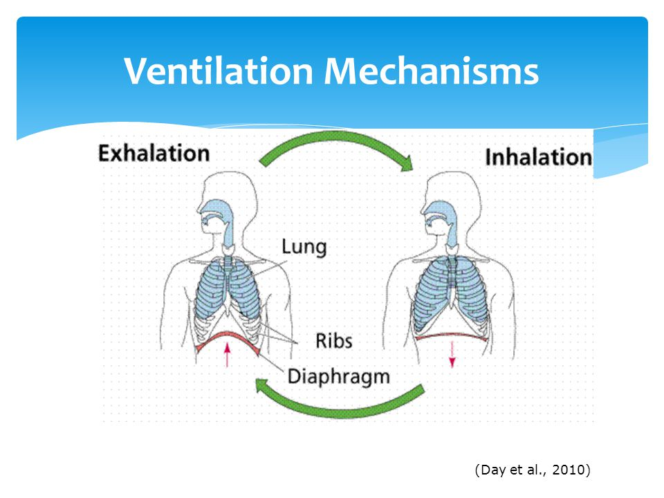 Ventilation Mechanisms