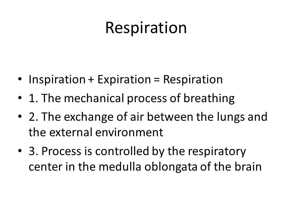 Respiration Inspiration + Expiration = Respiration