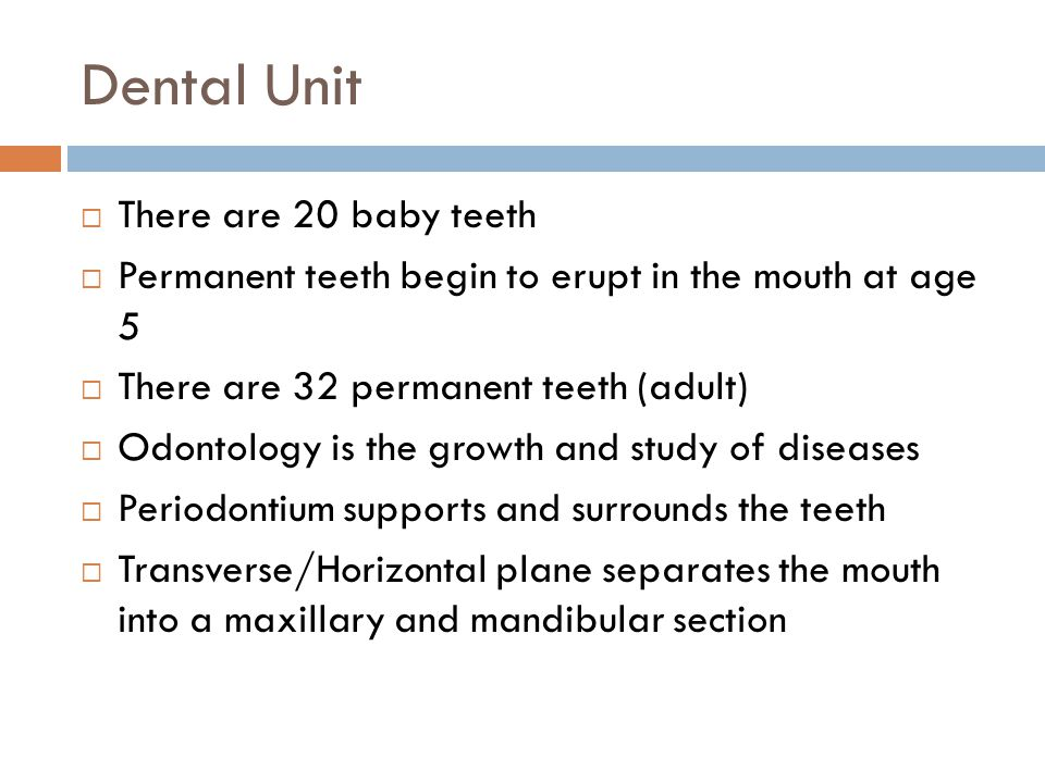 Dental Unit There are 20 baby teeth