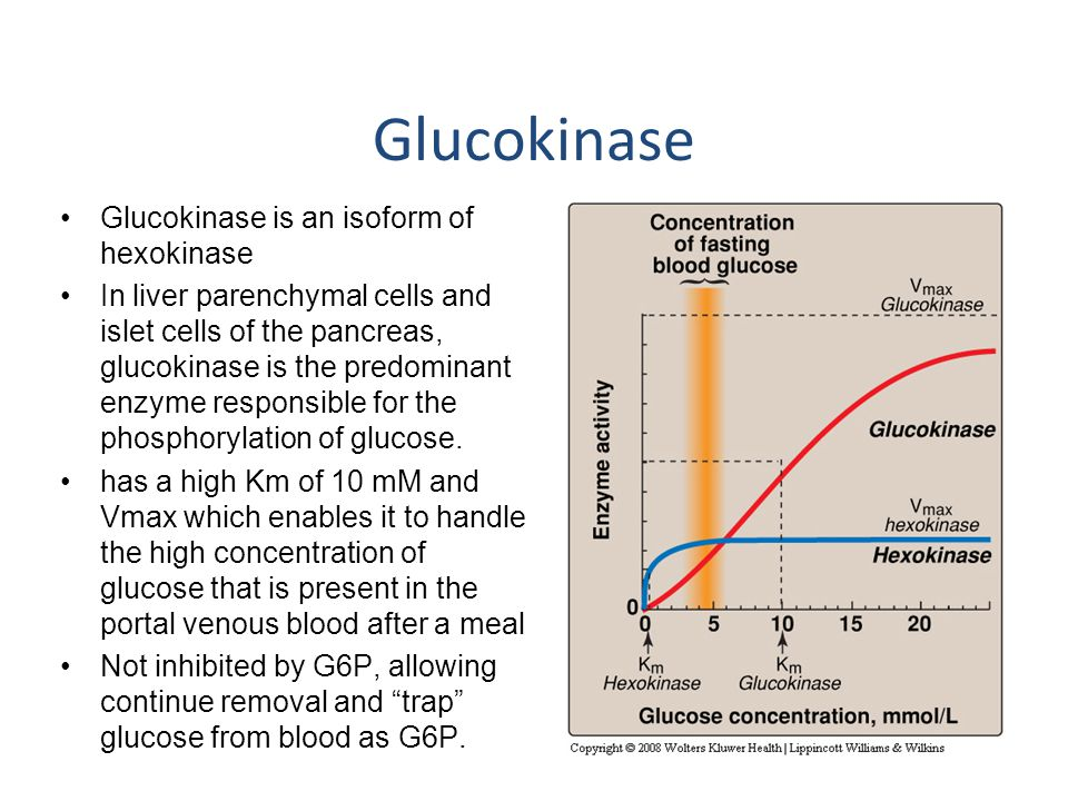 Glucokinase Glucokinase is an isoform of hexokinase