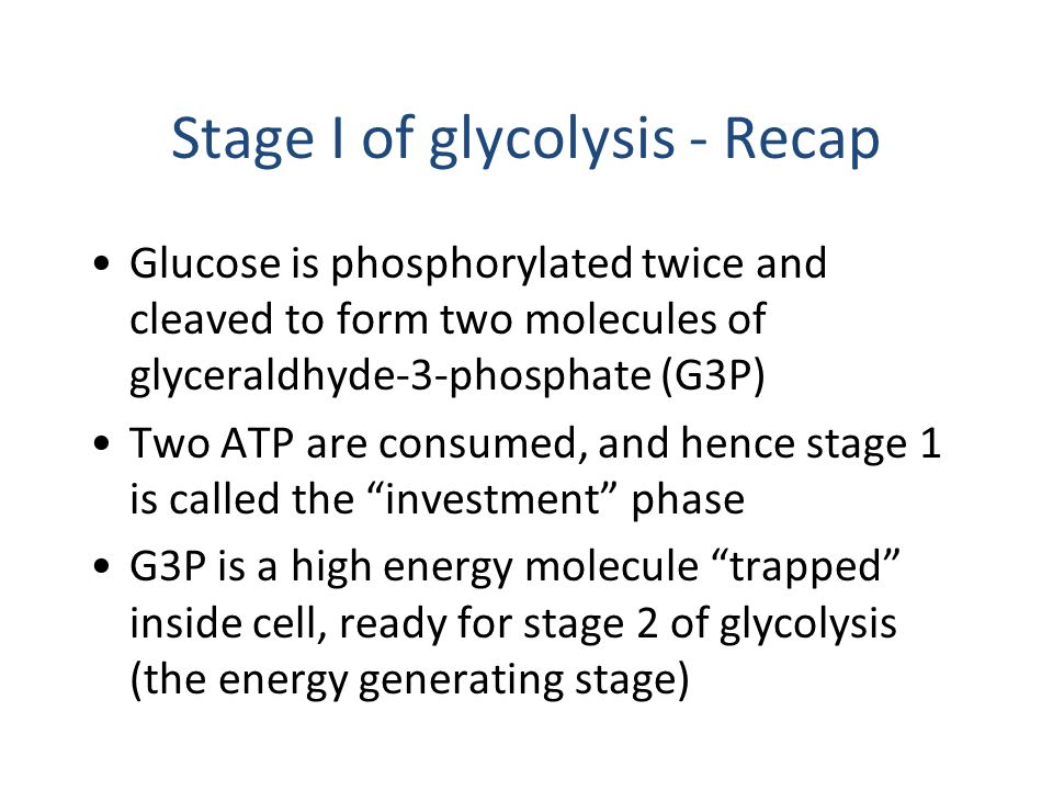 Stage I of glycolysis - Recap