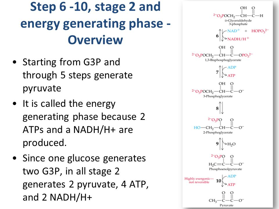 Step 6 -10, stage 2 and energy generating phase - Overview